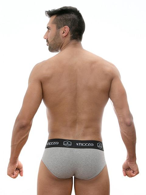 Stezzo Men's Underwear | Briefs Slips Grey